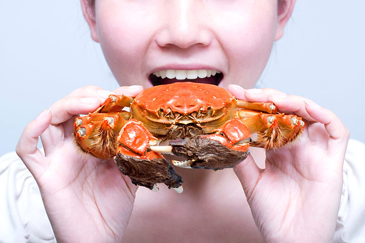 Crab During Pregnancy
