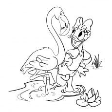 Daisy Duck With Flamingo