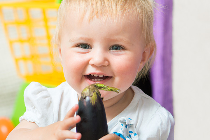 Eggplant Baby Food Recipes