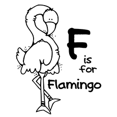 flamingo coloring pages f for flamingo