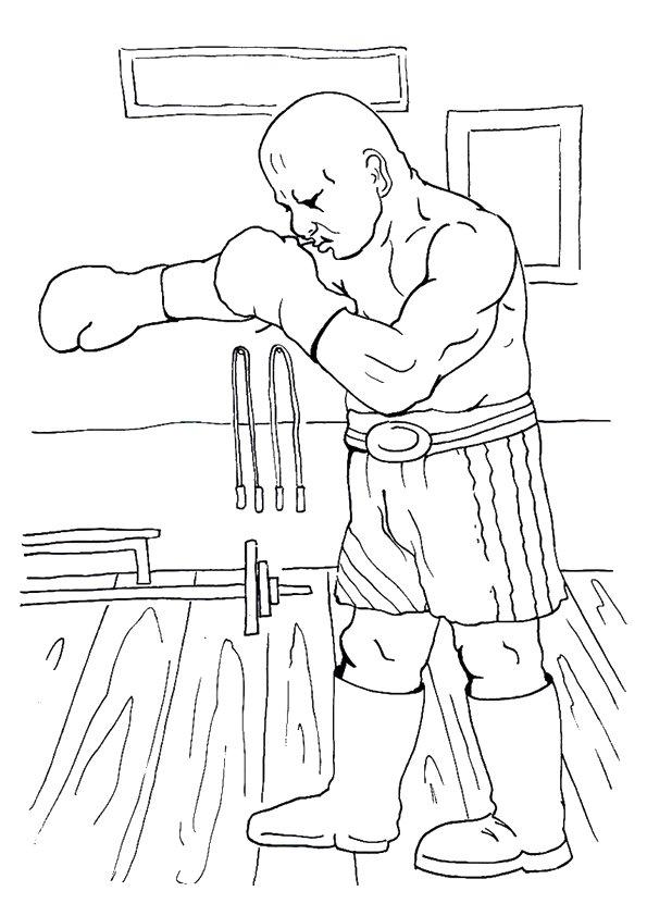 Fierce-Boxer