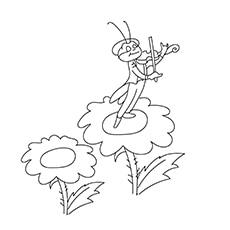 Grasshopper Playing Violin