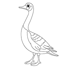 Hawaiian Goose Coloring Page