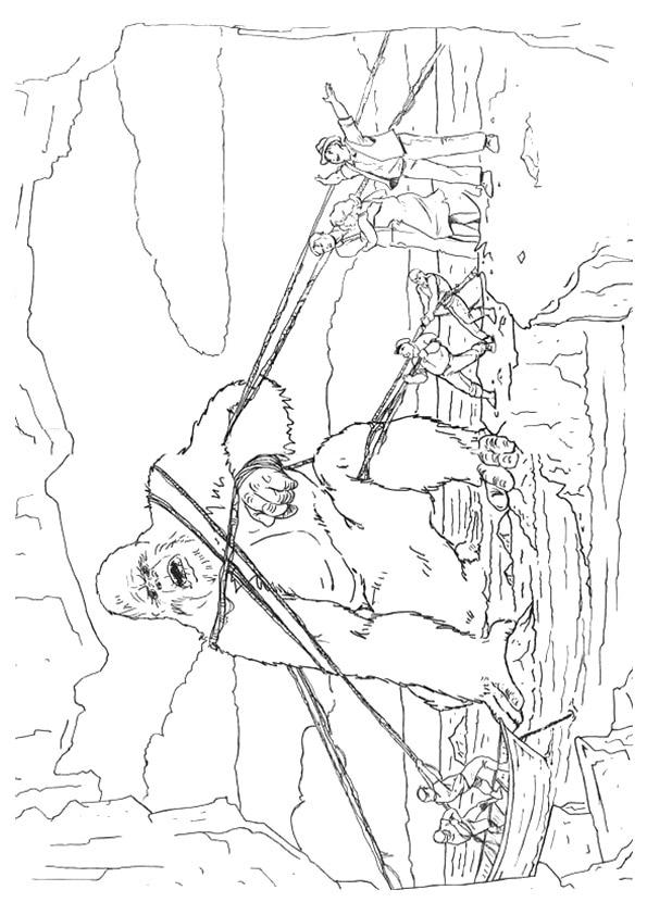 King-Kong-Captured