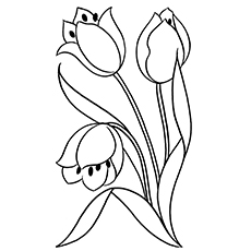 Beautiful Lady Tulip Pic to Color