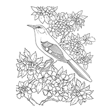 Top 10 Mockingbird Coloring Pages For Toddlers