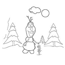 Olaf Plucking Flower 17