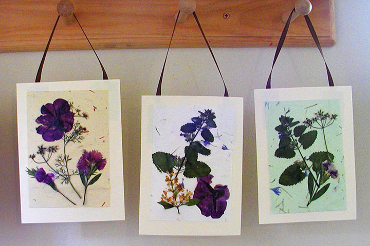 11 beautiful card and gift ideas for teachers day pressed flower cards m4hsunfo Gallery