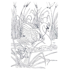 Swan Coloring Pages - Princess Swan