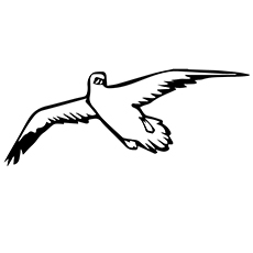 Seagull Coloring Page - Seagull Flying In The Sky