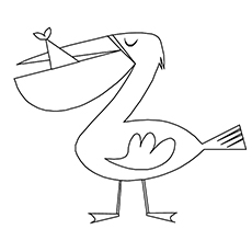 Simple Pelican Coloring Page