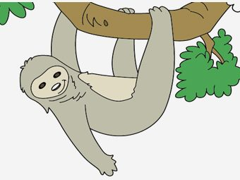 Top 10 Sloth Coloring Pages For Your Toddler