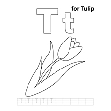 Coloring Sheet of T For Tulip