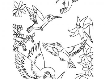 Top 10 Humming Bird Coloring Pages For Your Toddler