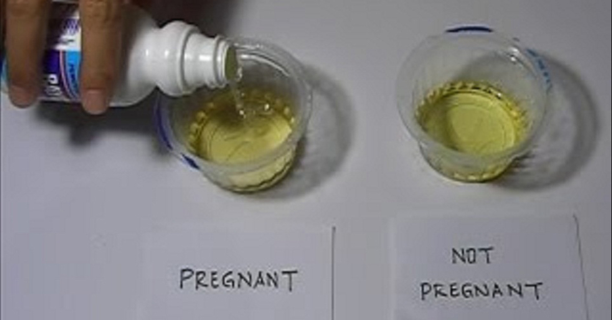 Image result for vinegar pregnancy test results