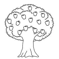 Top 25 Tree Coloring Pages For Your Little Ones Free Tree Coloring Image