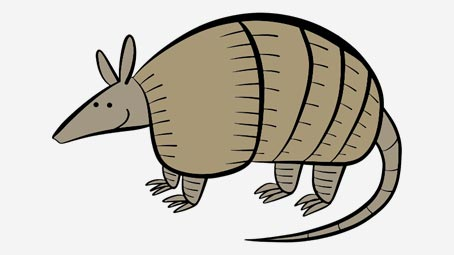 armadillo animal coloring pages.  Animal Coloring Pages MomJunction
