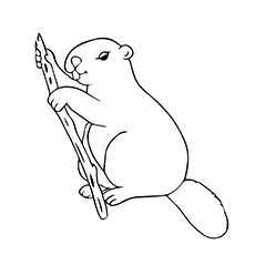 Beaver Enjoying His Meal Printable to Color
