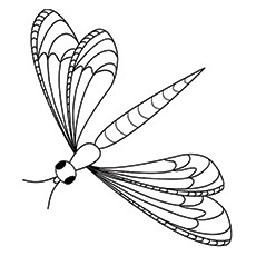 Dragonfly Coloring Page - Blue-Fronted Dancer