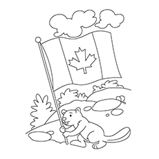 Beaver Holding the Canada Flag to Color