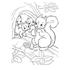 Chipmunk Coloring Pages - Chipmunk-Perched-On-A-Tree