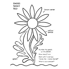 Daisy Coloring Pages - Color By Number Daisy
