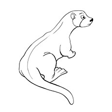 European Otter Coloring Page