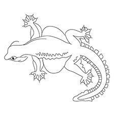 gecko coloring pages flying gecko - Gecko Coloring Pages