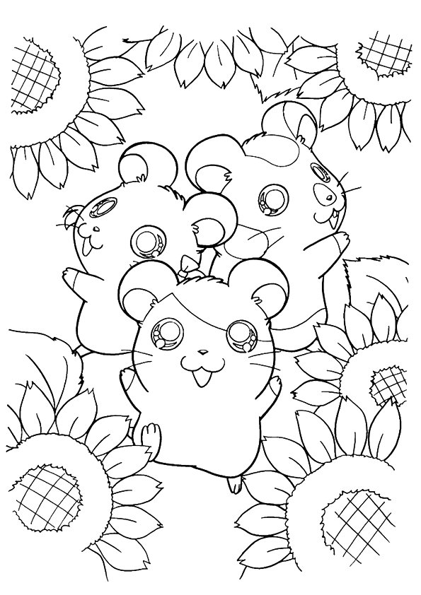 Hamtaro-Surrounded-By-Sunflower