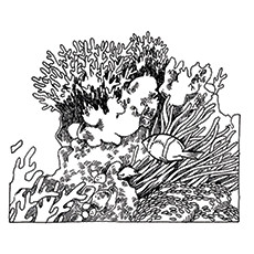 Coloring Pages Honeycomb Shaped Coral