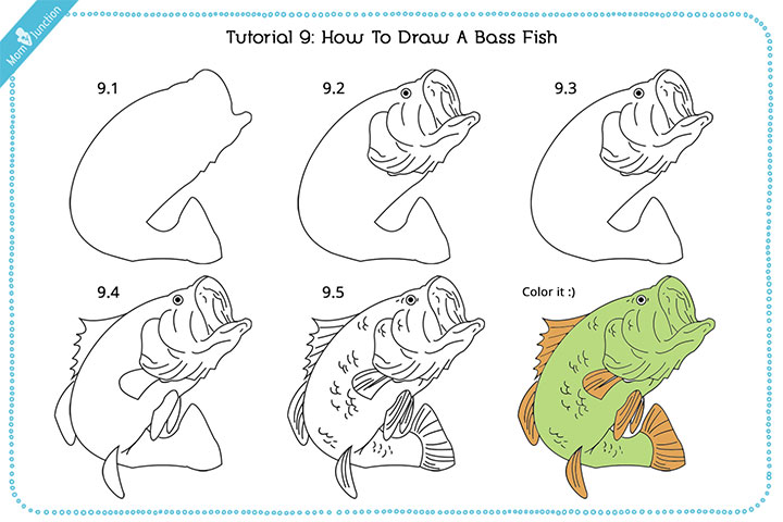 How To Draw A Bass Fish With Pictures