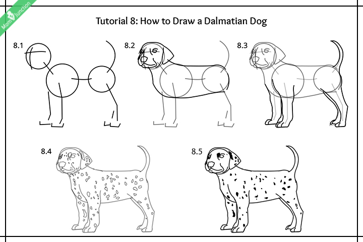 How To Draw A Dalmatian Dog Pictures