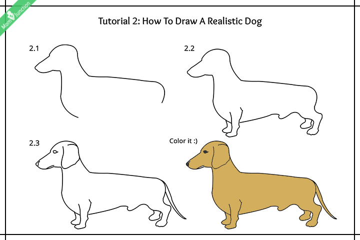 How To Draw A Realistic Dog Pictures