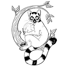 10 Funny Lemur Coloring Pages For Your Toddler