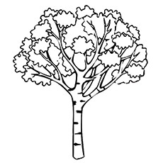 Joshua Tree Coloring Page to Print Free