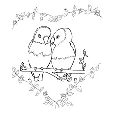 Coloring Pages of Lovebirds Parrot
