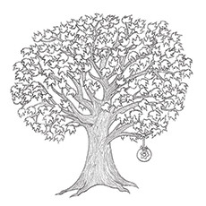 Maple Tree Pine Coloring Pages