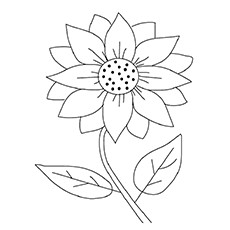 Maximilian Sunflower Coloring Page