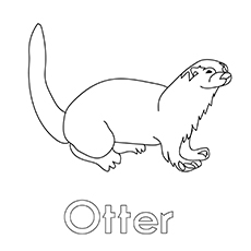 Otter Coloring Images