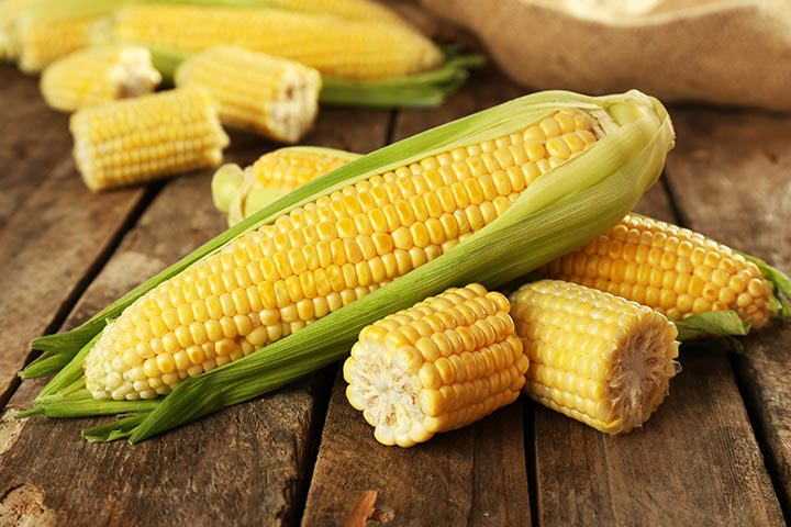 Thanksgiving Games For Preschoolers - Pass The Corn