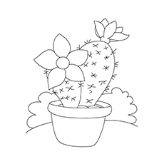 Cactus Coloring Page - Peruvian Apple