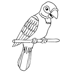 Coloring Picture of Puerto Rican Parrot