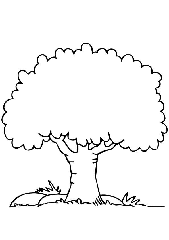 Simple-Tree