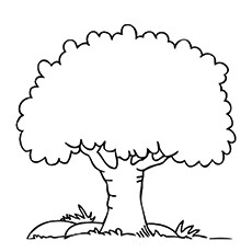 Simple Tree Coloring Free Printables