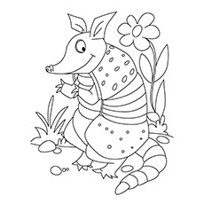 sly armadillo coloring page