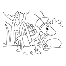 Snakeweed Grasshopper Coloring Page
