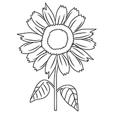 Sunny Smile Sunflower Coloring Page