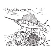 Coral Swordfish Near The Reef Coloring Page To Print