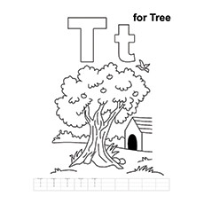 T For Tree Colouring Page
