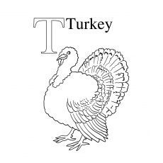 T For Turkey